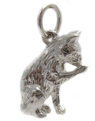 Cat Licking Paw Silver Charm