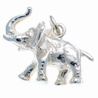 Elephant African Silver Charm