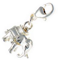 Elephant With Howdah Silver Charm