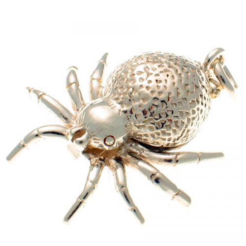 Spider Opening Silver Charm