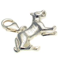 Tiger Large Sterling Silver Charm